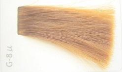 14レベルのカラー毛束にG 8 u 2対Clr 1 を塗布